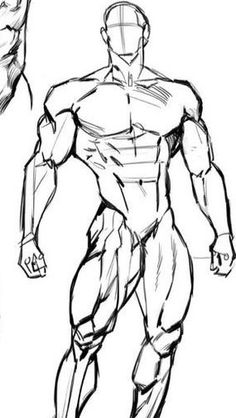 Body Reference Drawing, Anatomy Reference, Art Reference Poses, Body Sketches, Anatomy Sketches, Art Poses, Drawing Poses, Arte Com Grey's Anatomy, Human Anatomy Drawing