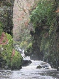 Our family spent a day in Betws y Coed in North Wales, Snowdonia. We discovered Fairy Glen, dragons and a rhino. Lots of walks and things to discover here. Fairy Glen, European Travel Tips, Snowdonia National Park, Great Names, Suspension Bridge, Rhinos, I Want To Travel, North Wales, Fairies