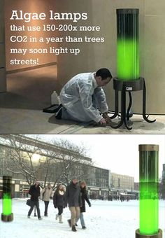 Algae powered street lamps showing innovation and making environmental success. Do you think this could be an answer the extreme carbon surplus? Green Technology, Futuristic Technology, Science And Technology, Technology Gadgets, Business Technology, Technology Design, Technology Innovations, Teaching Technology, Technology Updates