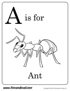 a is for ant coloring page - Ant Coloring Page Black White