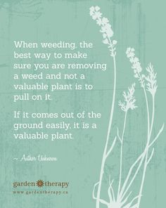 When weeding, the best way to make sure you are removing a weed and not a valuable plant is to pull on it. If it comes out of the ground easily, it is a valuable plant FREE PRINTABLE QUOTE