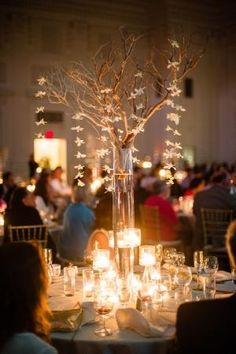 Tall manzanita branch centerpiece with hanging orchids and candles by imogene