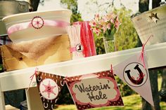 Pink Cowgirl Party!, Kara's Party Ideas