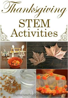 Thanksgiving STEM Activities STEM doesn't take a holiday! Even Thanksgiving offers some fun science Thanksgiving Activities For Kids, Thanksgiving Parties, Holiday Activities, Thanksgiving Crafts, Stem Activities, Thanksgiving Offers, Thanksgiving Decorations, Babysitting Activities, Thanksgiving Prayer