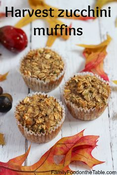 Healthy harvest zucchini muffins are full of goodness with oats, banana, applesauce and zucchini! | FamilyFoodontheTable.com