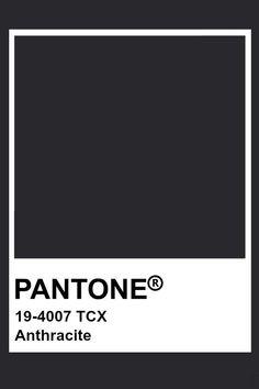 Pantone Anthracite Pantone Tcx, Pantone Swatches, Pantone Colour Palettes, Color Swatches, Pantone Color, Paint Color Schemes, Colour Pallete, Web Design, Pallets