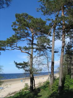 www.jurmala.lv / ec.europa.eu/enterprise/sectors/tourism/eden/index_en.htm    Jūrmala is situated in the largest resort city in the Baltic States. It is known for its natural treasures – the mild climate, sea, healthy air, curative mud and mineral wate Food, Air, and Water are many times toxic....WHY?