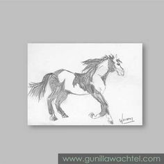 Daily Drawing 14 - ACEO horse sketch