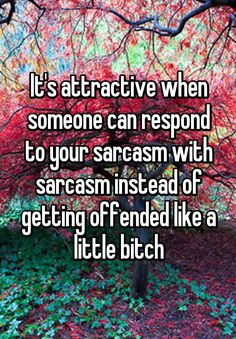 """It's attractive when someone can respond to your sarcasm with sarcasm instead of getting offended like a little bitch"""