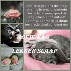 Christian Poems, Evening Greetings, Good Night Blessings, Goeie Nag, Goeie More, Afrikaans Quotes, Special Quotes, Night Quotes, Trust God