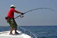 Pesca del bacalao, conoce la especie y su forma de pesca - Todo para la pesca