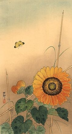 """Small butterfly and sunflower"" by Ohara Koson, no date"