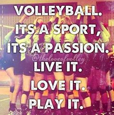 volleyball it's a sport its a passion live it love it play it
