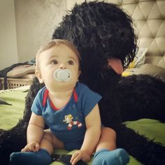 Kron & Arie Black Russian Terrier, Maine Coon Cats, Terrier Dogs, Children, Young Children, Boys, Kids, Child, Kids Part