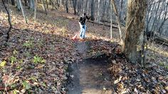Giving Back to the Northeast Iowa Trails