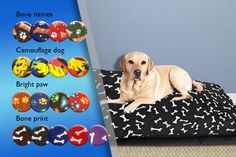 Luxury Pet Bed - 17 Designs!