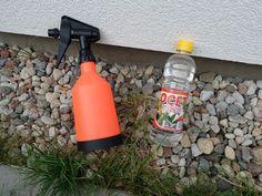 Ocet na chwasty w kostce brukowej. Jak stosować, proporcje, opinie Lawn Edger, Fire Extinguisher, Design, Gardening, Compost, Lawn And Garden, Horticulture