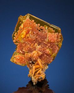 WULFENITE  San Francisco Mine (Cerro Prieto Mine), Cerro Prieto, Cucurpe, Mun. de Cucurpe, Sonora, Mexico   The San Francisco Mine in Sonora, Mexico started out as a gold mine but, as mining progressed, shifted into production of Silver and Molybdenum before closing in 1912. It is the Molybdenum minerals that caused it to be re-opened in the 1980s for its phenomenal Wulfenite and Mimetite specimens. This period produced some of the finest Wulfenites ever found - from anywhere on the planet.