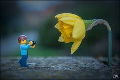 The Daff | Legography by Dan Beecroft