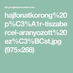 hajfonatkorong%20p%C3%A1r-tiszabercel-aranyozott%20ez%C3%BCst.jpg (975×268)