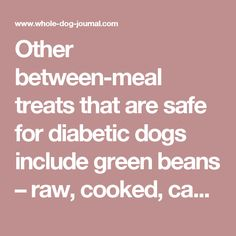 Other between-meal treats that are safe for diabetic dogs include green beans – raw, cooked, canned, or frozen – or fresh, crunchy snap peas or carrot sticks; sardines or tuna packed in water; small amounts of canned pumpkin (plain, not the pie mix); freeze-dried liver; dried salmon; hard-boiled eggs; cheese (be careful of too much fat); bully sticks; dried beef tendons; chicken feet; and most low-carb treats formulated for dogs or cats.