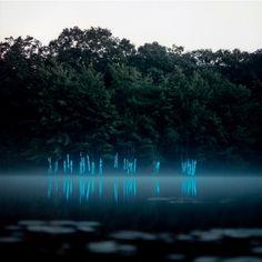 BARRY UNDERWOOD'S LIGHT ART INSTALLATIONS