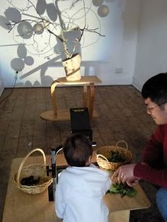 """light/shadow play  place a tree and hang """"ornaments"""" or birds on it with shadows"""