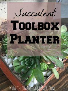Succulent Toolbox Pl
