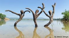 Driftwood art in Hungary by tamas kanya Land art
