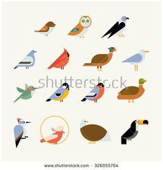 Vector bird icon collection. Different birds species like: owl, toucan, hummingbird, bullfinch and more vector illustration birds
