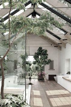 Inside foliage