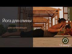 ВИДЕО: Простая йога для здоровья спины - Лайфхакер