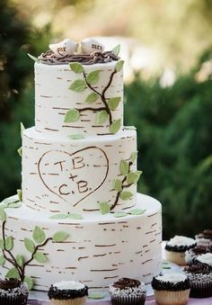 rustic white and green wedding cake with bird topper 2015