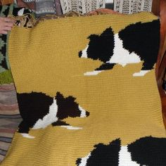 Knitting Pattern For Border Collie : 1000+ images about Border Collie on Pinterest Border collies, Knitting char...