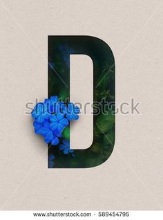 Unique Letter D alphabet made of real blooming flowers and leaves with paper cut. Illustration of floral alphabet collection for design project, poster, card, invitation, brochure and scrapbook