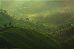 http://news.xinhuanet.com/foto/2012-07/19/123433309_91n.jpg- luscious green, rolling hills.