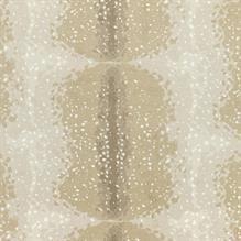 59 Best Carpet Trends Images Carpet Trends Carpet Rugs