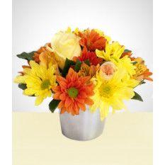 Fleuriste Fleurs Sauvages Livraison Fleurs Envoyer Des Fleurs Fleurs