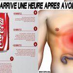 Voilà ce qui arrive à votre corps une heure après avoir bu du Coca (45 minutes est choquant)