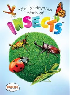 The Fascinating World of Insects BrainFood Learning https://www.amazon.com/dp/B005ZV54Z0/ref=cm_sw_r_pi_dp_KsfwxbWZ0Q4QG