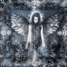 Angel of Death ~ #gif #angel #horror #goth #wings