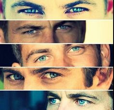 His eyes just lured you in. In my opinion, Paul Walker is a legend. May God be with your soul.
