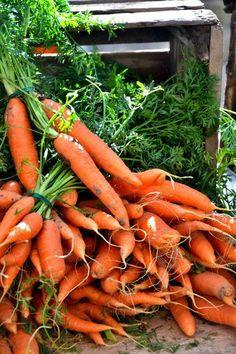 Tingly Lips? Why Sichuan Peppers Cause Odd Sensation | Gesundheit ... Wie Man Einen Gesunden Gemuse Garten Plant Und Aufrechterhalt