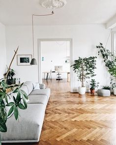 via Apartment Therapy
