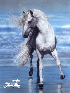 In its movie adaptation, the main cast horse was a black ...
