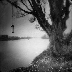 rope swing noose - Google Search