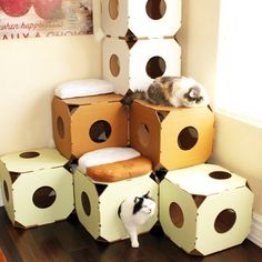 If you have a cat you know how genius this simple invention is. So much nicer to look at than a brown cardboard box! Made from industrial strength recycled and recyclable cardboard and vegetable based ink. Made by Cattystacks.