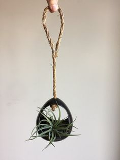 ArtByJenF air plant holder, air plant hanger, open air plant, air plant terrarium, air plant gift, airplant terrarium, tillandsia, ceramic planter, plant décor, airplant, air planter, air plant, tillandsia holder