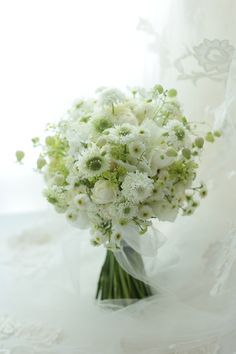 Love this green and white White Wedding Bouquets, Bride Bouquets, Flower Bouquet Wedding, Floral Wedding, Simple Flowers, Dried Flowers, White Flowers, Beautiful Flowers, Cake Bouquet