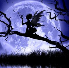 A fairy on a beautiful, enchanted tree branch. Description from pinterest.com. I searched for this on bing.com/images #fairy #moon